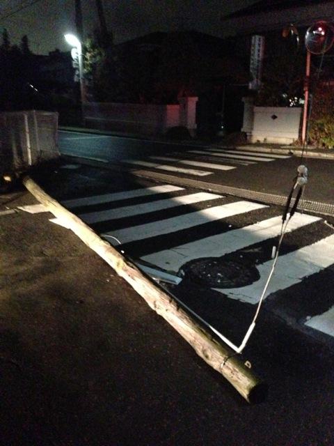 http://hakkaku-culture.info/webmagazine/images/jiken_4481.jpeg