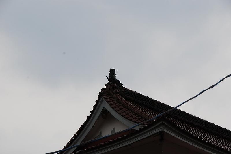 http://hakkaku-culture.info/webmagazine/images/nana005.jpg
